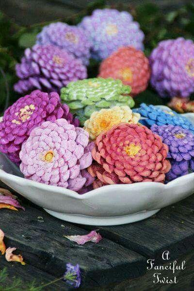 flower-pine-cones